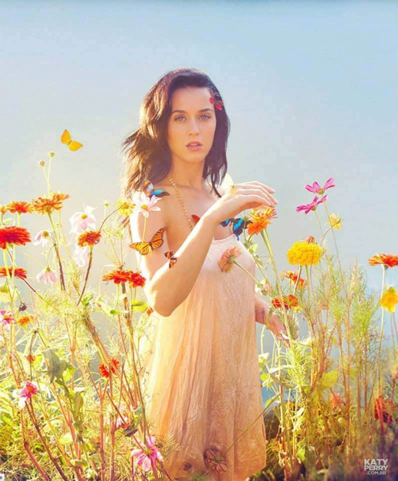 Katy Perry Prism Booklet (4)