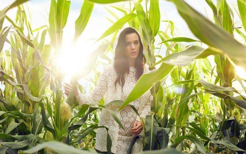 Katy Perry Prism Booklet (5)