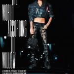 Willow-Smith-by-Karl-Lagerfeld-for-V-Magazine