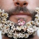 beard6jpg