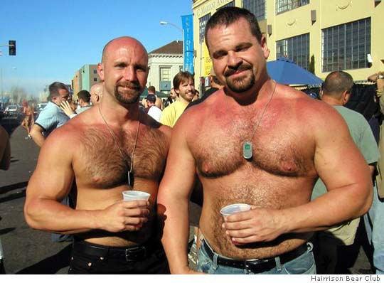 bears-bear3