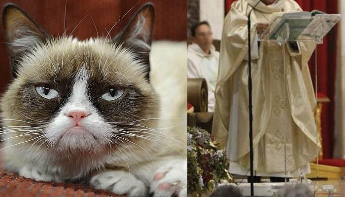 gatto-prete