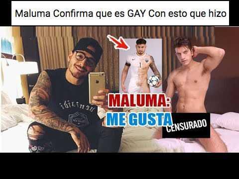 maluma es gay