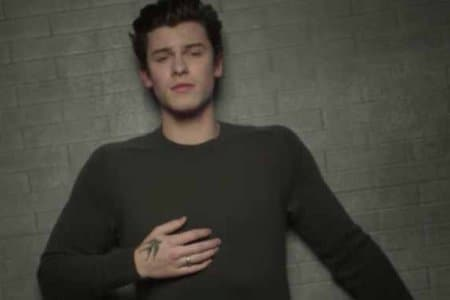 Shawn Mendes In My Blood Video