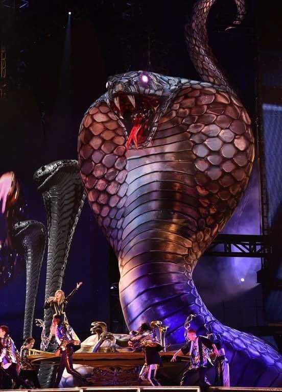 Taylor Swift Reputation Tour (9)