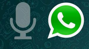audio WhatsApp