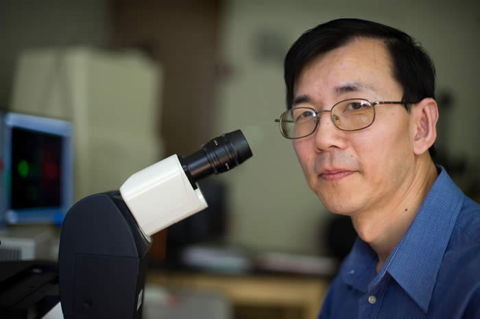 dott. Cheng Hai-Feng