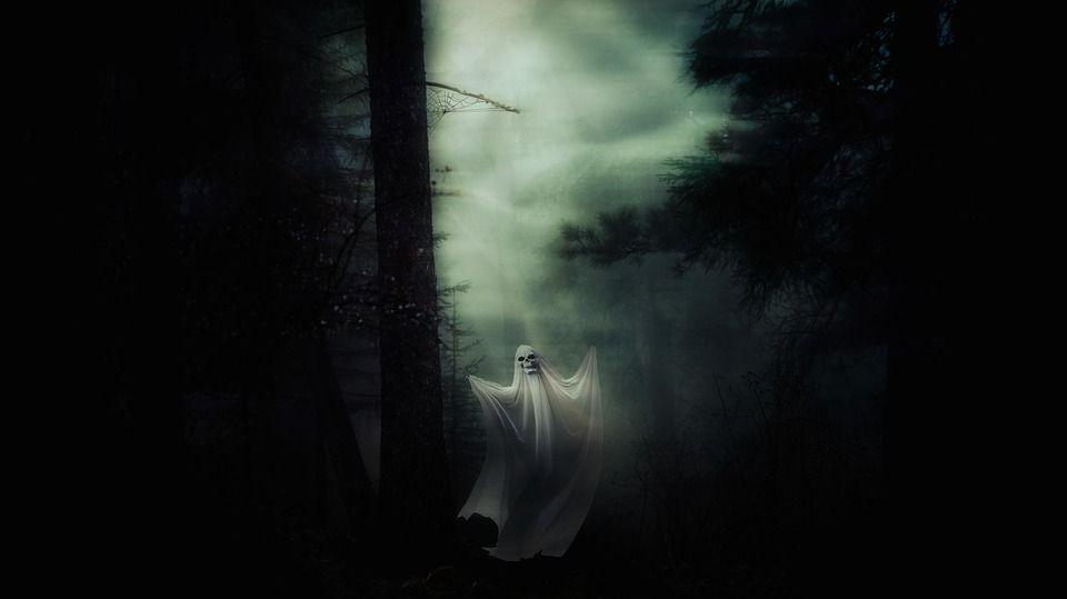Avvistamenti di fantasmi e case infestate