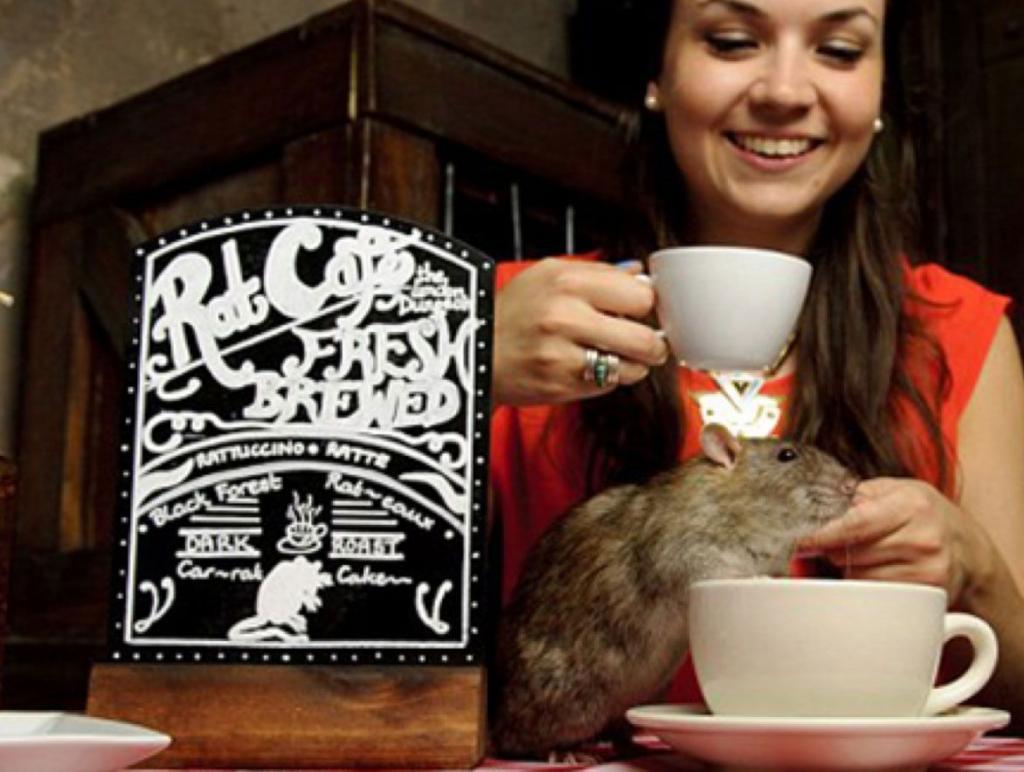 Il Black Rat Cafè