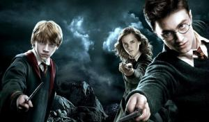 I fan di Harry Potter sono i migliori