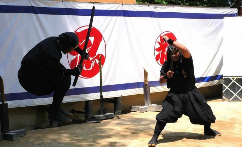 Ninja professionisti cercasi