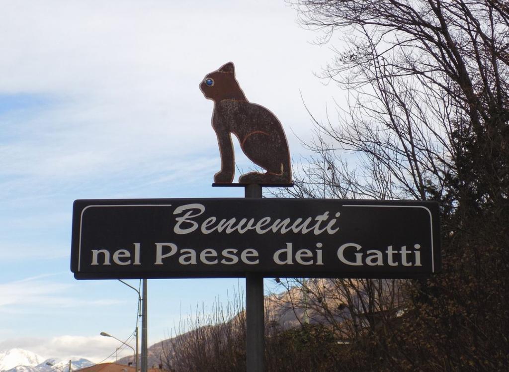 Brolo il paese dei gatti