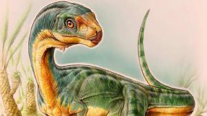 Ricostruzione del Frankenstosauro