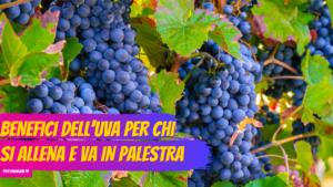 Benefici dell'uva per chi si allena e va in palestra