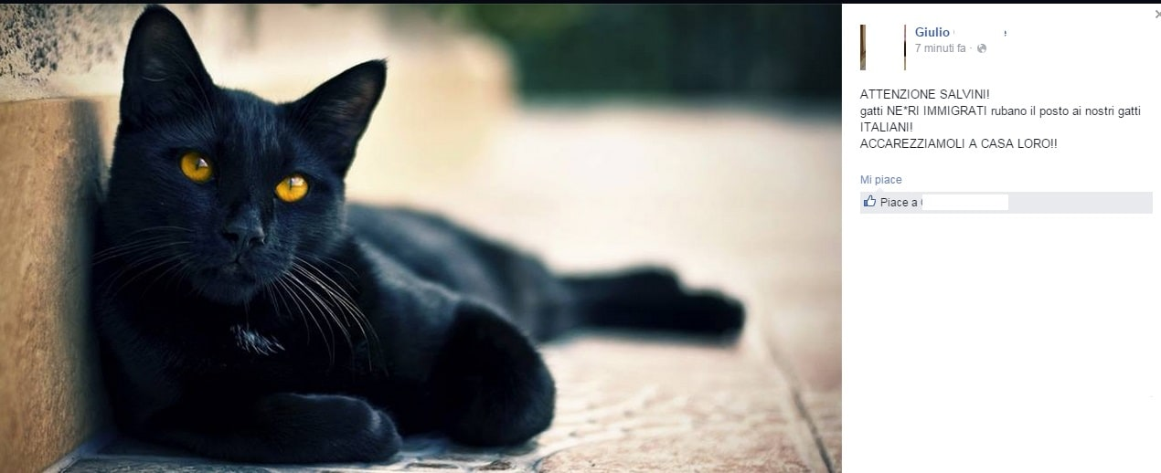 Www nero micio Foto com