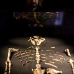 Australopiteco-Lucy