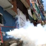 zika virus sintomi