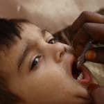vaccino anti acari