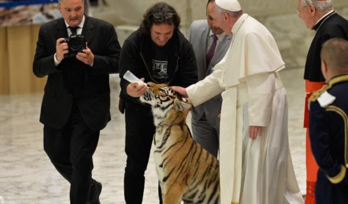 Papa Francesco animalisti