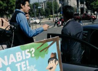#CannabisDay