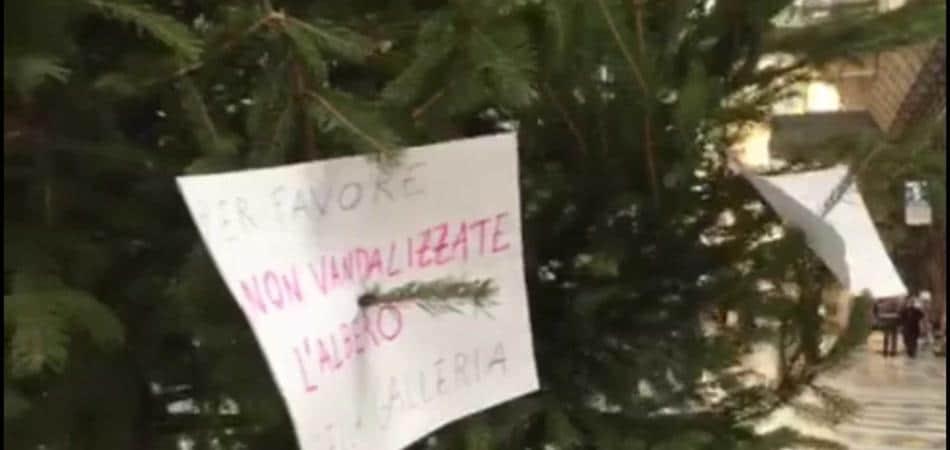 Rubato albero di Natale