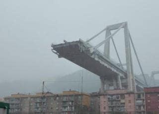 crollo ponte mafia