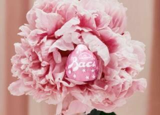 bacio perugina rosa ruby