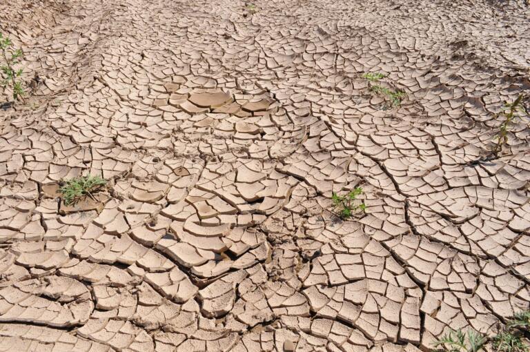 In Italia il riscaldamento globale è già un allarme, ma ness