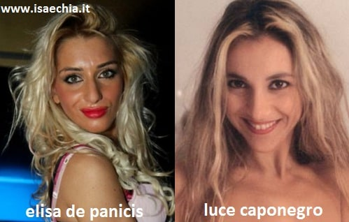 Somiglianza tra Elisa De Panicis e Luce Caponegro