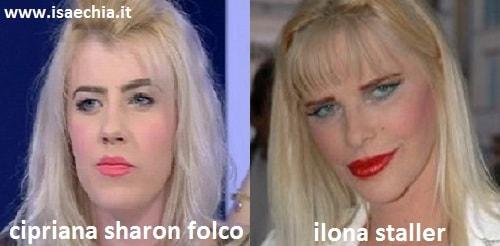 Somiglianza tra Cipriana Sharon Folco e Ilona Staller