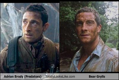 Somiglianza tra Adrien Brody e Bear Grills
