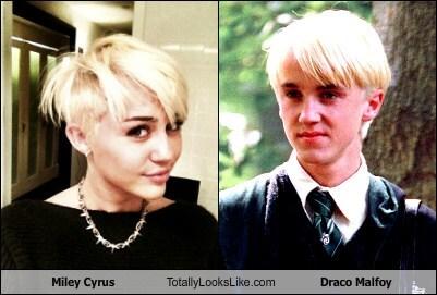 Somiglianza tra Miley Cyrus e Draco Malfoy