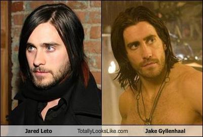 Somiglianza tra Jared Leto e Jake Gyllenhaal