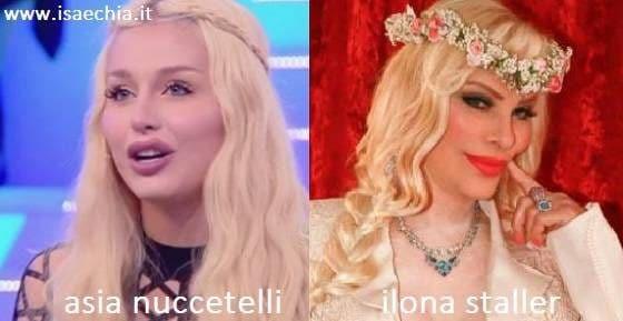 Somiglianza tra Asia Nuccetelli e Ilona Staller