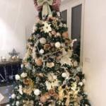 Albero di Natale - Di Vaio