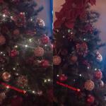 Albero di Natale - Giulia e Andrea