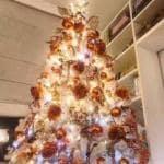 Albero di Natale - Ventura