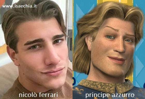 Somiglianza tra Nicolò Ferrari e il Principe Azzurro di 'Shrek'