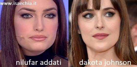 Somiglianza tra Nilufar Addati e Dakota Johnson