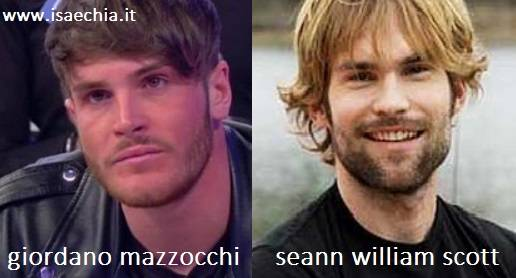 Somiglianza tra Giordano Mazzocchi e Seann William Scott