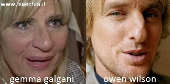 Somiglianza tra Gemma Galgani e Owen Wilson