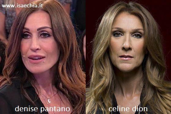 Somiglianza tra Denise Pantano e Celine Dion