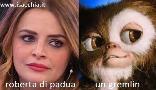 Somiglianza tra Roberta Di Padua e un Gremlin