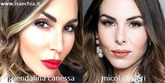Somiglianza tra Guendalina Canessa e Micol Olivieri