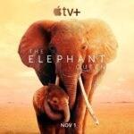 Apple Tv+ - The Elephant Queen