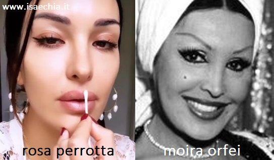 Somiglianza tra Rosa Perrotta e Moira Orfei