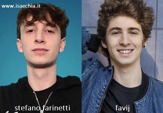 Somiglianza tra Stefano Farinetti di 'Amici 19' e Favij