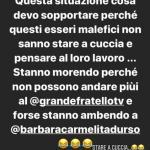 Instagram - Zocchi