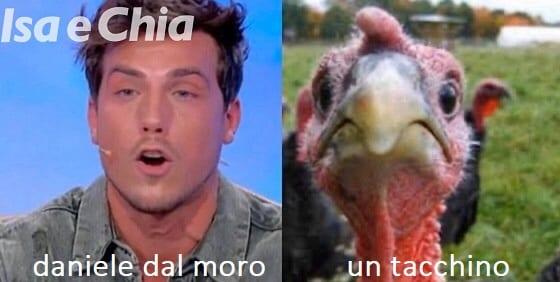 Somiglianza tra Daniele Dal Moro e un tacchino