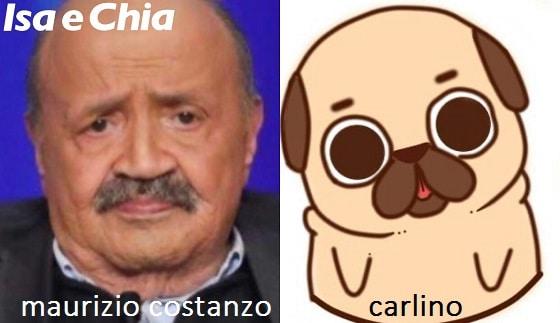 Somiglianza tra Maurizio Costanzo e un carlino